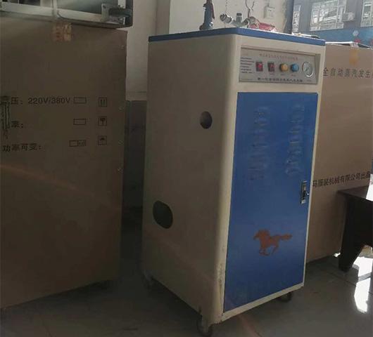 电热蒸汽发生器