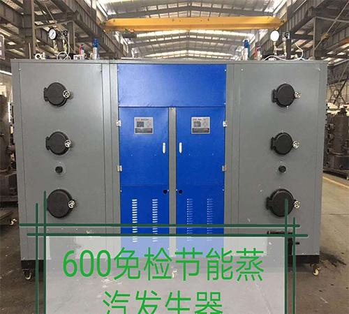 600免检节能蒸汽发生器