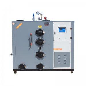 200生物质蒸汽发生器
